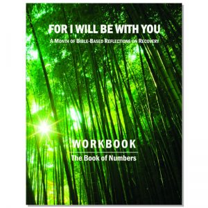 WorkbookCover- Numbers sq